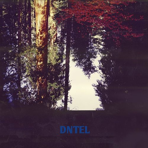 Aimlessness by Dntel
