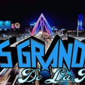 Desde el ensayo by Los Grandes De La Perla