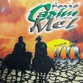 Amor de Aço, Vol. 2 von Capim Com Mel