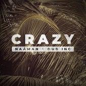 Crazy (feat. Dub Inc) by Naâman