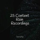 25 Content Rain Recordings von Namaste Yoga