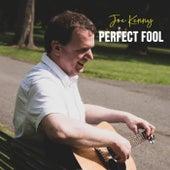 Perfect Fool di Joe Kenny