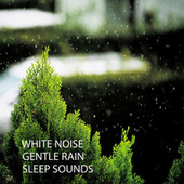 White Noise: Gentle Rain Sleep Sounds von Deep Sleep (2)