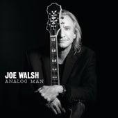 Analog Man de Joe Walsh