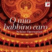 O mio Babbino caro - Schöne Opernarien von Various Artists