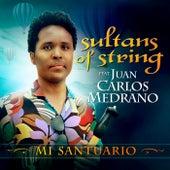 Mi Santuario by Sultans of String