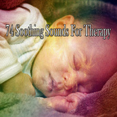 74 Soothing Sounds for Therapy by Ocean Sounds (1)