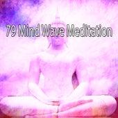 79 Mind Wave Meditation von Lullabies for Deep Meditation