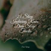 25 Sleep Inducing Rain: Deep Sleep Tracks de Water Sound Natural White Noise