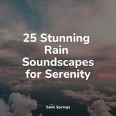 25 Stunning Rain Soundscapes for Serenity von Relaxing Music (1)