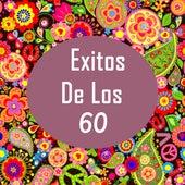 Grandes Exitos De Los 60 de Exitos Sesenta