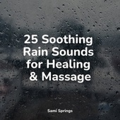 25 Soothing Rain Sounds for Healing & Massage by Rain Sounds Sleep