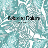 Relaxing Nature for Stress (Calm Down, Solution for Nerves, Rest) de Soothing Sounds