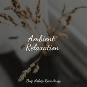 Ambient Relaxation von Entspannungsmusik