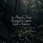 25 Peaceful Rain Sounds for Complete Chill Ambience by Sleep Sound Library