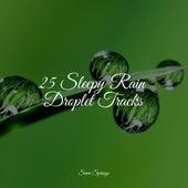 25 Sleepy Rain Droplet Tracks by Rain Sounds Sleep