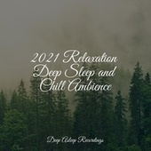 2021 Relaxation Deep Sleep and Chill Ambience de Massage Tribe