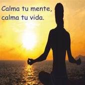 Calma Tu Mente, Calma Tu Vida by Musica Relajante