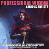 Professional Widow by Various Artists