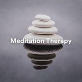 Meditation Therapy von Various Artists