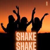 Shake Shake (Volume 1) by Various Artists