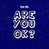 Are You Ok? by Shatta Wale