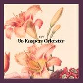 Sov by Bo Kaspers Orkester
