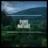 Pure Nature by Rain Sounds Sleep