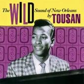 The Wild Sound Of New Orleans (Remastered) de Allen Toussaint
