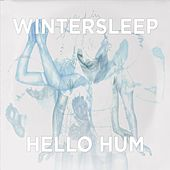 Hello Hum by Wintersleep