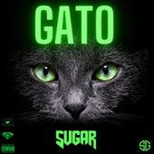 Gato by Sugar