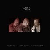 Trio von Agustín Bernal Eugenio Toussaint
