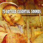 75 Bottled Essential Sounds de Smart Baby Lullaby