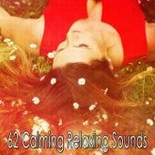 62 Calming Relaxing Sounds von Rockabye Lullaby