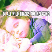 54 All Wild Tracks for Relaxing de Best Relaxing SPA Music