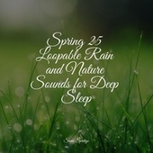 Spring 25 Loopable Rain and Nature Sounds for Deep Sleep de Nature Soundscape