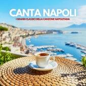 Canta Napoli by Various Artists