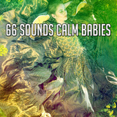 66 Sounds Calm Babies by Lullaby Land