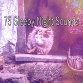 75 Sleepy Night Sounds by Best Relaxing SPA Music