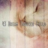 43 Dream Induced Child von Nature Sounds Nature Music (1)