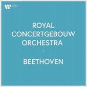 Royal Concertgebouw Orchestra - Beethoven fra Royal Concertgebouw Orchestra