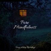 Pure Mindfulness by Sleepy Times
