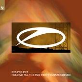 Hold Me Till The End (Ferry Corsten Remix) de DT8 Project