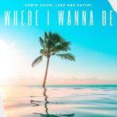 Where I Wanna Be by Edwin Ajtún
