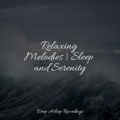 Relaxing Melodies   Sleep and Serenity by Sleeping Baby Songs