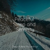 Peaceful Sleep and Serenity by Sleepy Times
