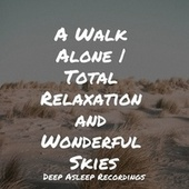 A Walk Alone   Total Relaxation and Wonderful Skies by Sleeping Baby Songs
