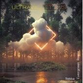 Evergreen (UltraViolet Djs Remix) by Yebba