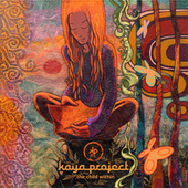 The Child Within (Tenet Audio Remix) de Kaya Project