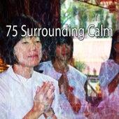 75 Surrounding Calm by Lullabies for Deep Meditation